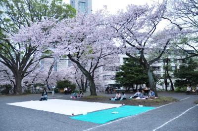 花見の場所取り。手前の緑のシートは、無人だった=4月、横浜市の掃部山公園、軽部撮影