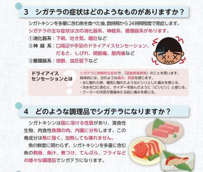 沖縄県が作成したシガテラ毒への注意喚起を求めるパンフレット。症状についても詳しく掲載されている