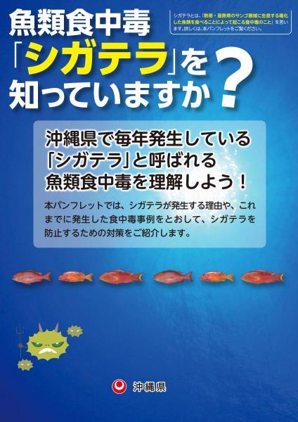 沖縄県が作成したパンフレットの表紙