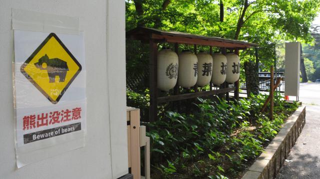 「熊出没注意」の貼り紙=2015年5月20日、仙台市青葉区