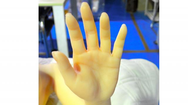 ラブドールの手のひら=東京都葛飾区のオリエント工業の工場
