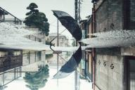 「雨の後は世界が分からなくなる」=高野伊乃さん提供