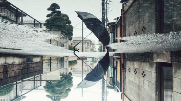 雨の後は世界が分からなくなる