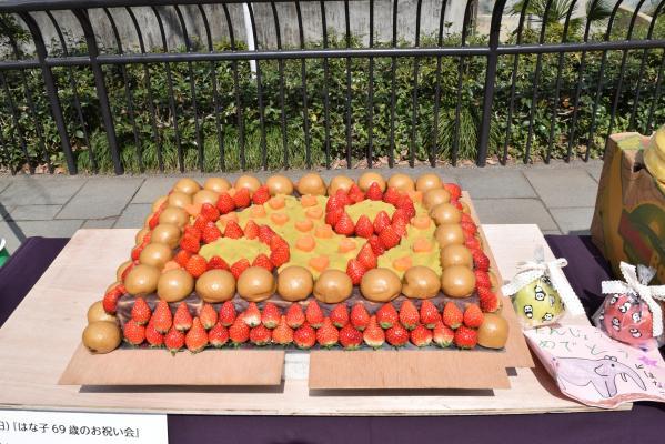 ゾウ舎の前で披露された69歳をお祝いする特製ケーキ。イチゴで「69」をかたどった=武蔵野市の井の頭自然文化園