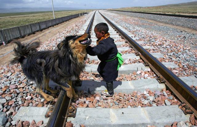 チベット犬と一緒に遊ぶチベット族の子ども=2006年6月