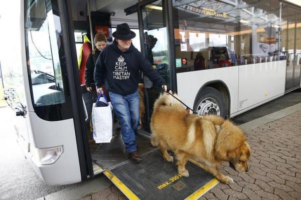 ドッグショーにチベット犬と一緒に現れた男性=バーミンガム、2016年3月10日、ロイター