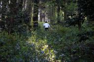 「何としてでも会いにいく」と山を越えていった男性=4月16日、熊本県西原村、金川雄策撮影