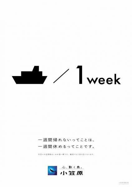 2014年夏に制作されたパネル展示=小笠原村観光局提供
