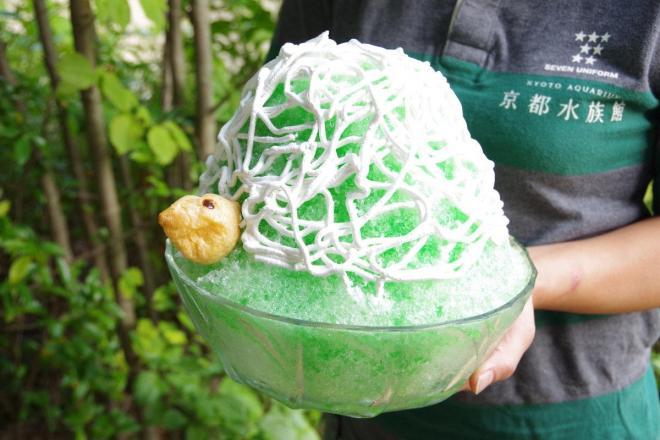 約6人前の大きさのかき氷「ゾウガメガ氷」。9月30日までの期間限定。税込み1000円