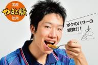 「水谷隼カレー」のパッケージ