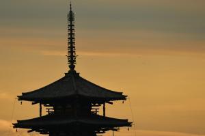 世界遺産に伝わる裏の顔…法隆寺の片目カエル 清水の舞台の生存率