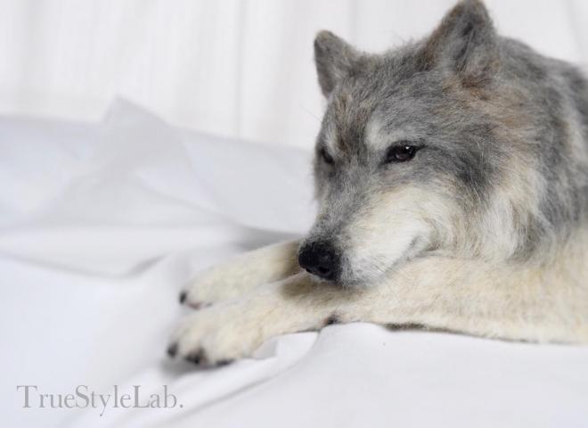 羊毛フェルトのオオカミ