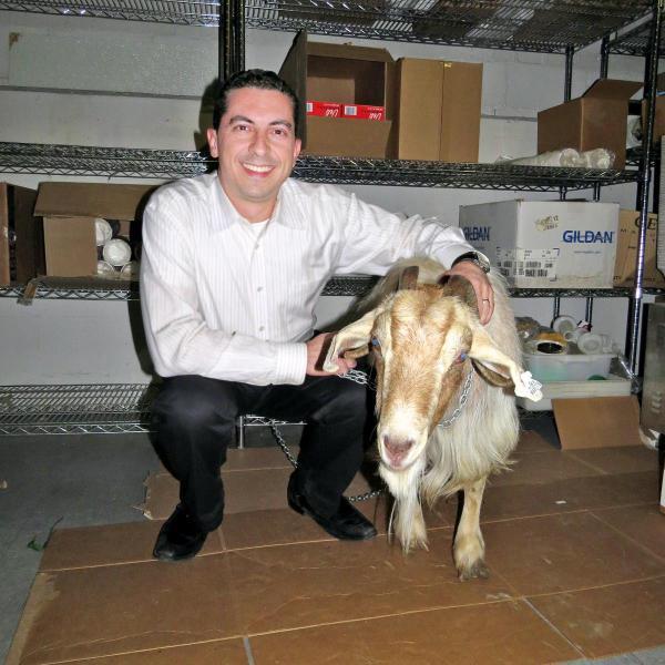 阪神が「カーネル・サンダース」の呪いなら、大リーグのカブスは「山羊の呪い」。呪った先祖を持つトム・シアニスさん(左)とインディアナ州で飼っているというヤギ「マーフィー」