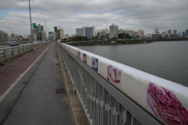 麻浦大橋の欄干に貼られてある食べ物の写真。一番手前はキムチ