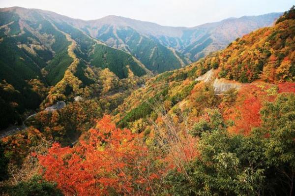 ナメゴ谷の全景=内田光撮影