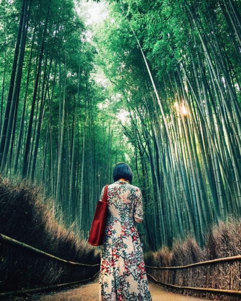 《花のドレス》 デザインのアイデア。悠久の竹林の中で花を纏う日本人女性。(京都・嵐山)