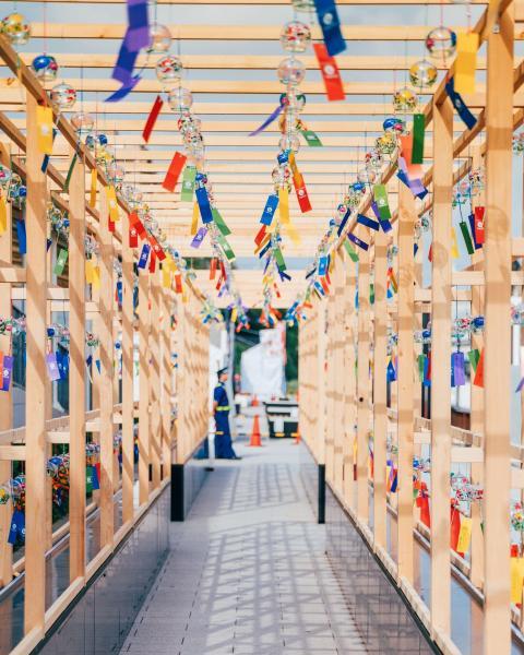 《風鈴の唄》 風に遊ばれて、ガラス製の風鈴が平和のメロディーを奏でる浅草。(東京・浅草)