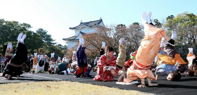 一斉に「金のしゃちほこ」を披露する参加者たち=11月12日、名古屋市中区の名古屋城、川津陽一撮影