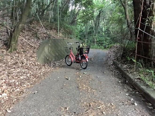 かつて「身の丈1号」が故障し、自転車通勤した時の写真