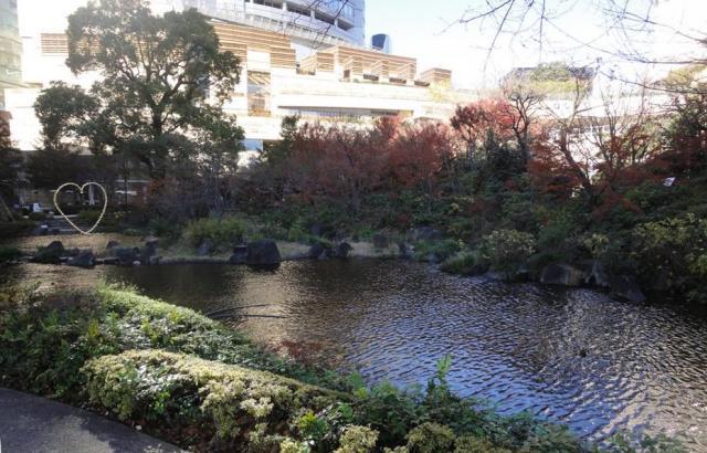 テレビ朝日本社前にある毛利庭園。なんだかすがすがしい気持ちになった