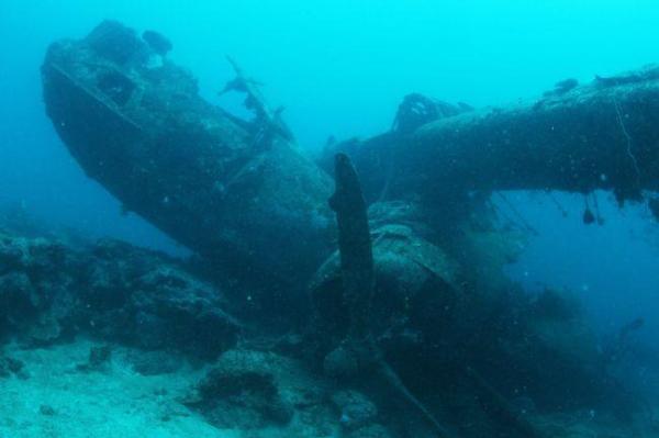 「カタリナ」はコンソリデーテッド・エアクラフト社が開発した飛行艇。太平洋戦争中は対潜哨戒、沿岸警備、海難救助などに使われていたという=9月4日、ソロモン諸島・ツラギ島沖、橋本弦撮影