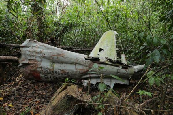 墜落時に分離したのだろうか、機体は主翼部分と尾翼部分が少し離れた場所で見つかった=9月8日、ソロモン諸島・ガダルカナル島、橋本弦撮影