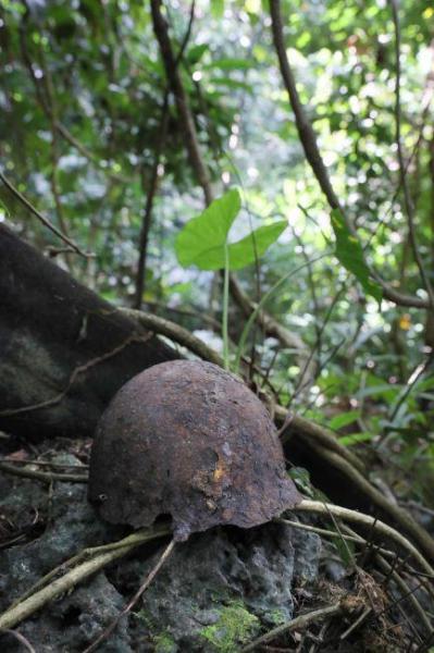 村の周囲に広がる密林に足を踏み入れると、岩の上に鉄かぶとを見つけた=9月2日、ソロモン諸島・ガダルカナル島、橋本弦撮影