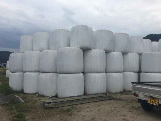 牧場のそばには巨大な飼料が山積みに。牛さん用の機能食品まであるんです。