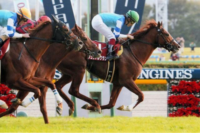 11月の重賞レース・アルゼンチン共和国杯で優勝した佐々木主浩さんの持ち馬シュヴァルグラン(右)。このレースでは佐々木さんのもう1頭の持ち馬ヴォルシェーブ(左)も3着と健闘した=JRA提供