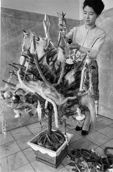 ドイツトウヒという本物の木を飾ったクリスマスツリー=1963年12月16日、東京・日本橋