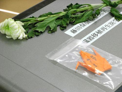 臓器を提供した少年の家族から贈られた折り鶴。「成功を祈っています」と書かれている=2011年4月14日、愛知県豊明市沓掛町田楽ケ窪の藤田保健衛生大病院