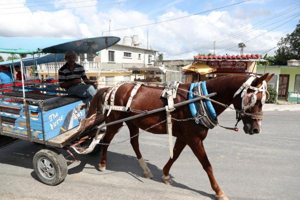 生活の足として行き交う馬車=2016年12月2日、ハバナ郊外