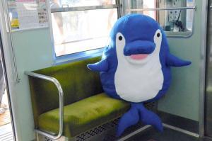 イルカの「ことちゃん」、悲しい生い立ち話題に 高松琴平電鉄に聞く