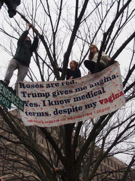 木に登って抗議する女性たち