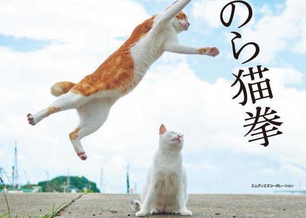 1月25日に発売された『のら猫拳』(エムディエヌコーポレーション)