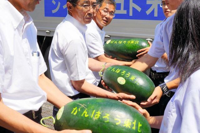 被災地に贈られる大山スイカ=2012年7月9日、鳥取県倉吉市越殿町