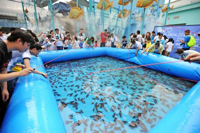 湖北省武漢市でザリガニ釣りを楽しむ人々=2016年6月