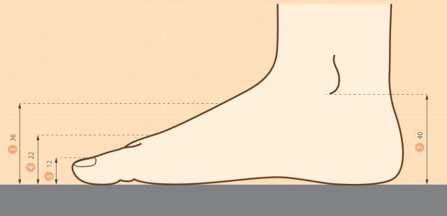3歳児の平均的な親指先端の厚さは1.2センチ=「子どものからだ図鑑 キッズデザイン実践のためのデータブック」より