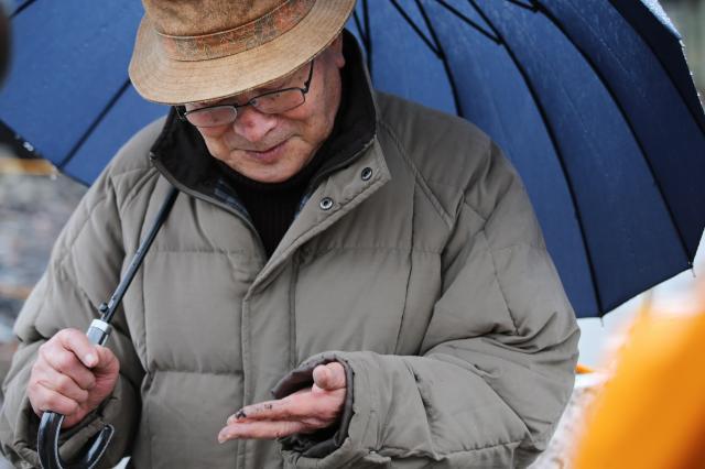 手にしたヒスイのタイピンを見つめる山岸竹治さん=2017年1月22日午後、新潟県糸魚川市、関田航撮影
