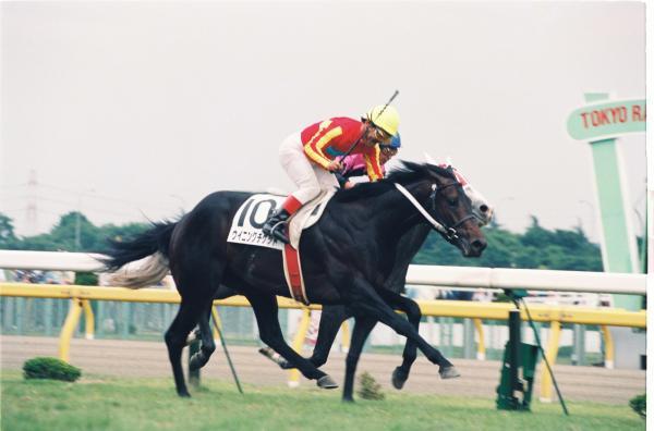 第60回(1993年)ウイニングチケット