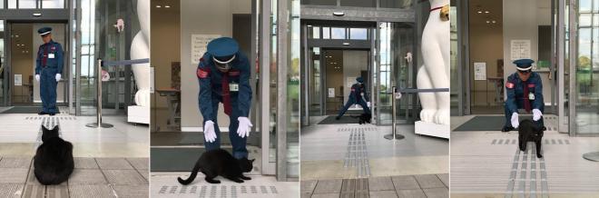 会場に入ろうとする猫と警備員の攻防