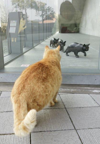 籔内佐斗司さんの彫刻作品「猫も歩けば」に見入る猫