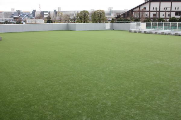 屋上の人工芝生