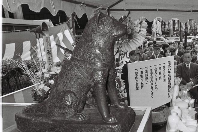 渋谷駅前で開かれた忠犬ハチ公の慰霊祭=1971年