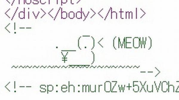 amazonのソースコードの末尾に隠されている、鳥のイラスト。「MEOW」(ニャー)と鳴いている。