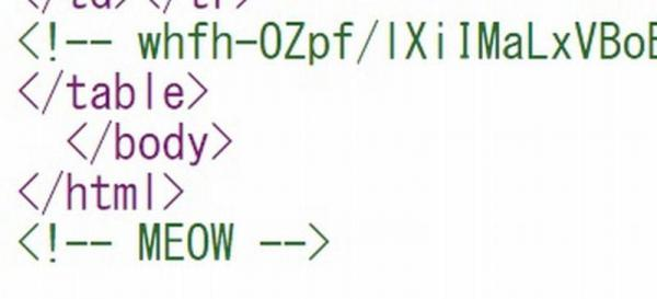 2006年から、日米のamazonには「MEOW」(ニャー」の文字が隠されていた。