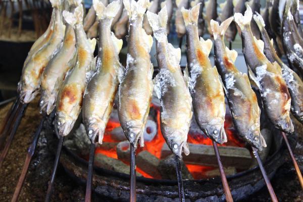 炭火でこんがりと焼いたヤナ売店の鮎の塩焼き