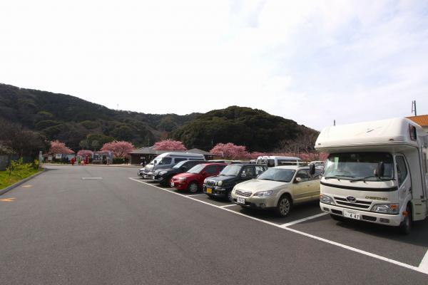 「みなみの桜と菜の花まつり」の期間中は乗用車に500円の環境保全料がかかる