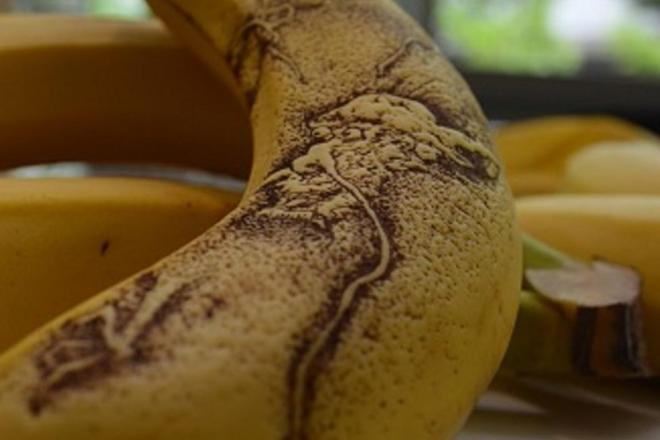 バナナに描かれた竜。時間が経つにつれ、凹凸もつき、陰影もついてくる