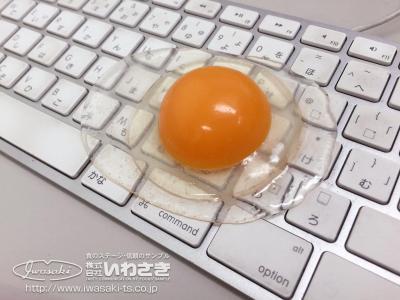 こちらは生卵。もちろん食品サンプルです